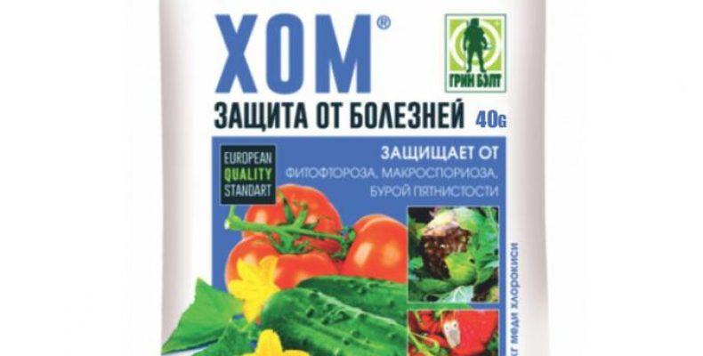 """Препарат """"ХОМ"""" от болезней растений – надежный фунгицид"""